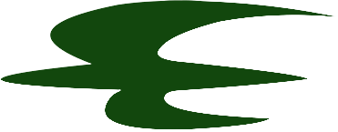 logo Iraqi Airways